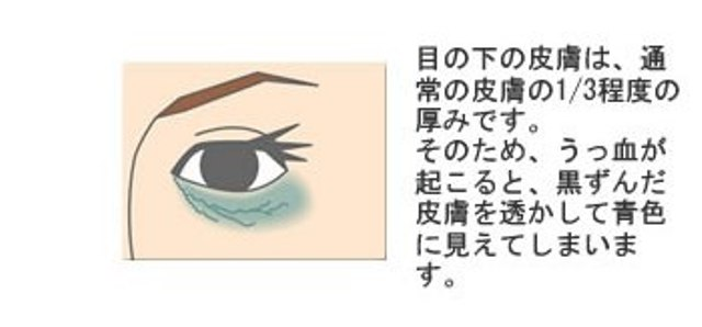 トピックス画像